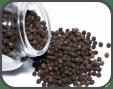 Bioperine Extract